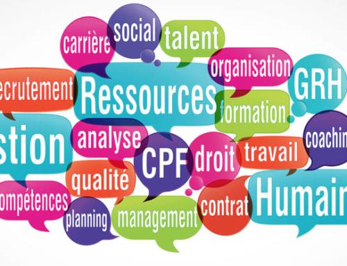 Quelles solutions pour une organisation optimale de l'entreprise ?